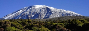 Vaccination for Mt Kilimanjaro Climbing
