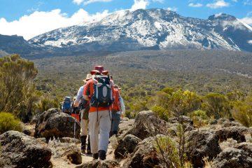 8 Day Kilimanjaro Trek Lemosho Route